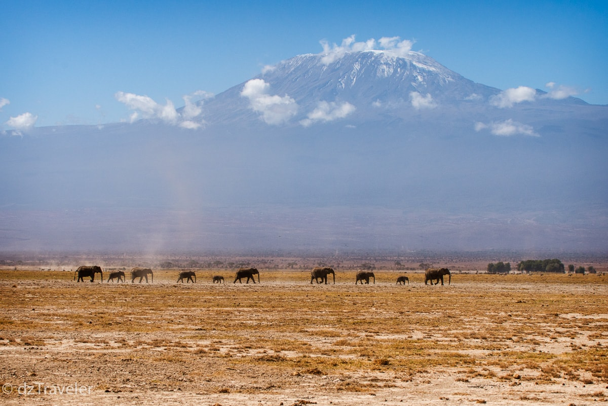 Amboseli National Park, Ken