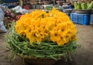 These flowers is one of the delicacy in Bangladesh