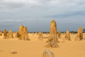 Trip to Pinnacles at Nambung National Park, from Perth