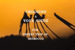Choosing a Tour Guide for Desert Trip in Morocco