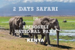 2 Days Safari in Amboseli National Park, Kenya