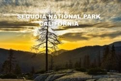 8 BEST SPOTS TO VISIT AT SEQUOIA NATIONAL PARK