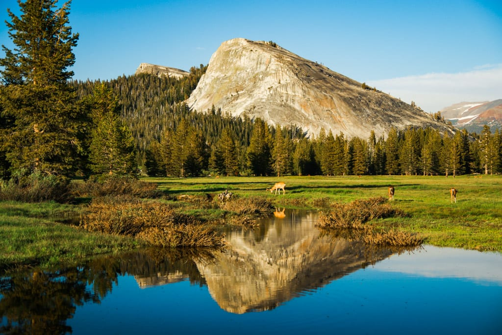 Landscape of Tuolumne Meadows and Lembert Dome with reflections
