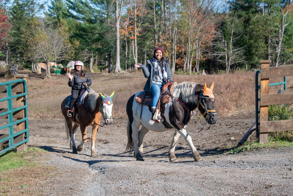 horseback riding at Lajoie Stables